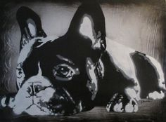 French Bulldog - By DENAMBRIDE  (on concrete canvas)