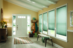 Our Color Lux cellular shades can incorporate color into any room. Featured here is Mother Earth.
