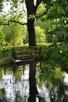 Bridge by the River Test, Hampshire