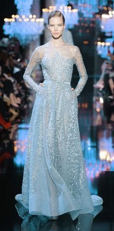 What Lady Veralyon would wear, Elie Saab