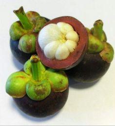 Mangostim,  fruta originária da Malásia
