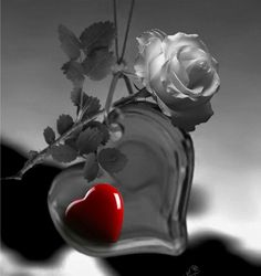 """From the collection """"GIF"""" Rose Flower Wallpaper, Heart Wallpaper, Love Wallpaper, Love You Images, Love Pictures, Beau Gif, Splash Photography, I Love Heart, Glitter Graphics"""