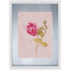 Rose I, 18 inchW x 22 inchH, Wall Art, White