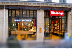 Vue de deux vitrines ainsi que des deux néons bleus et  de l'enseigne - Café Malongo Paris