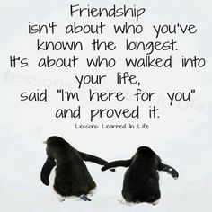 Friendship! (and love those penguins!)
