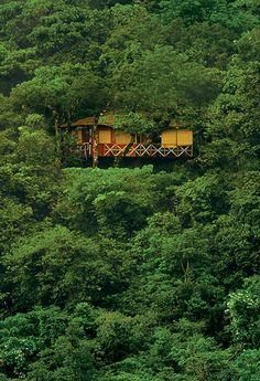 Vythiri Resort, Wayanad.  Gorgeous eco-resort, jungle getaway in the heart of Wayanad. The accommodations are varied and breathtaking, but we especially love the treehouses.
