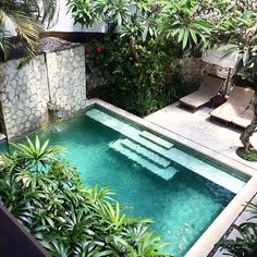 Gorgeous 47 Lovely Small Courtyard Garden Design Ideas For Home. garten design 47 Lovely Small Courtyard Garden Design Ideas For Home Small Backyard Pools, Backyard Pool Designs, Small Pools, Swimming Pools Backyard, Swimming Pool Designs, Pool Landscaping, Backyard Patio, Swimming Ponds, Small Swimming Pools