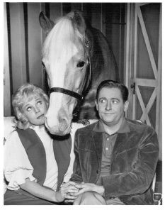 Mr. Ed.  I still remember the theme song.