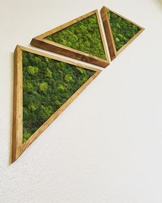 Triangle Moss Art Moss Wall Art, Moss Art, Car Carpet, Plant Decor, My Room, Decorative Accessories, Vibrant Colors, Art Pieces, Triangle
