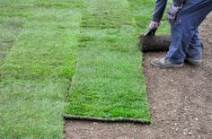 How to Lay Sod | Planting New Grass | Lawn Repair. I found this very helpful when we put in our yard.