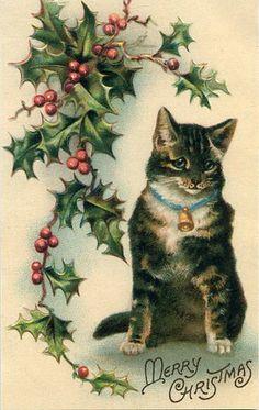 Vintage Christmas Cat