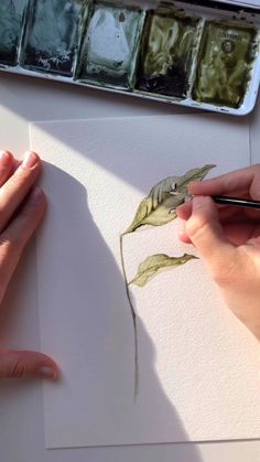 An Autumn collection of watercolor art created by Angele Kamp and available for purchase Music by Weekend Coffee Watercolor Paintings For Beginners, Watercolor Video, Watercolor Drawing, Floral Watercolor, Botanical Art, Botanical Illustration, Watercolor Illustration, Watercolor Flowers Tutorial, Watercolour Tutorials