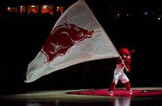Arkansas Razorbacks: Basketball Hogs Make the List