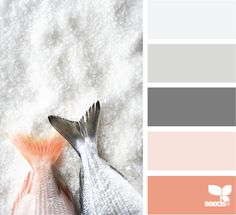 iced tones: gray and pink color scheme