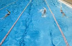 How to Plan a Swim-a-Thon