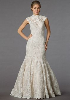 Danielle Caprese for Kleinfeld 113063 - Off White, lace high neck fit and flare.