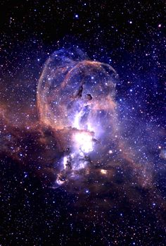 The Statue of Liberty Nebula (NGC 3576) in the constellation Carina