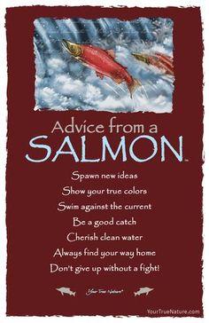 Advice from a Salmon Frameable Art Postcard