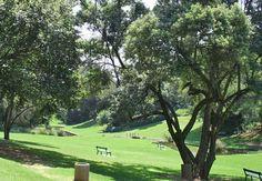 The Wilds Johannesburg City, Jacob Zuma, Third World Countries, Pretoria, Ol Days, First World, South Africa, Cities, Landscapes