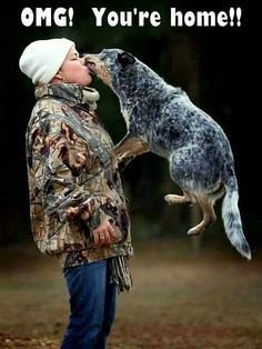 That's about right. Love my Blue Heeler!!