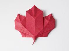 Michael G. LaFosse Maple leaf - Поиск в Google