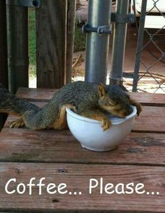 Coffee humor-this is me on a Monday morning!