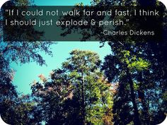 {an afternoon walk} #quotes #nature