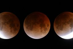 My Blog: How to Photograph the Supermoon Total Lunar Eclips...