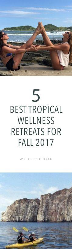 Fall 2017 wellness retreats