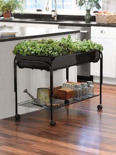 Macetas interior: Ensalada del jardín móvil | Suministro del jardinero