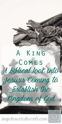 Join us in this FREE Bible Study (with FREE printables) on the Kingdom of God. All of the Old Testament was meant to prepare God's people for the Kingdom of God. Through the prophets, He sent a message of His Kingdom coming and a King who would be on the throne. Jesus Christ coming to Earth was a fulfillment of this Word and also a pointing toward the true Kingdom of God in Heaven. He is the King who was promised, but His kingdom is not of this world. It is a Kingdom we have yet to look forward Bible Study Lessons, Free Bible Study, Kingdom Of Heaven, The Kingdom Of God, Advent Activities, Advent Season, Christ The King, Surrogacy, Book Study