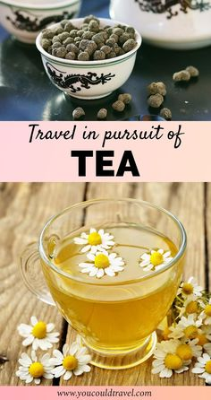 Want to travel in pursuit of tea? Here is where to find the best tea in the world. Plus entries from travel bloggers who share their tea experiences.