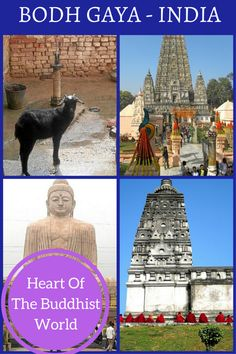 Bodh Gaya is 385km from the border of Nepal and a place of solitude where you can connect with your true self and find enlightenment. #travelindia #budda