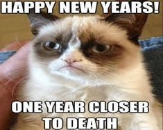 10 best funny new year meme images in 2018