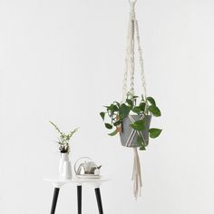 White Macrame Plant Hanger  Hanging Pot Plant by PigeonMacrame