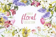 This amazing Floral Bundle has been brought to you by Stuart and the team at The Hungry JPEG. With over 1900 floral themed illustration