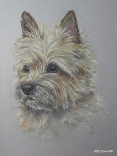 Honden / Tekeningen | Selena-art.nl