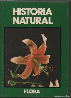 Historia Natural, Flora: La vida de las Plantas. Josefa Alonso, Javier Fernández Casas y Félix Muñoz