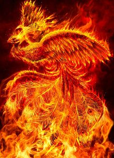 Phoenix by ravenscar45.deviantart.com on @DeviantArt__ Phoenix by ravenscar45  Digital Art / Photomanipulation / Fantasy©2012-2015 ravenscar45      The birth of the Phoenix from the flames
