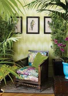 Now that IS a statement wallpaper. Dare to lime up your home? Bring the Cuban jungle inside this season.