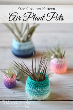 Make these fun, bright ombre-colored pots to display your air plants. 4 pot sizes are included in the free crochet pattern. modern Crochet Air Plant Pot Pattern - Whistle and Ivy Modern Crochet Patterns, Crochet Flower Patterns, Crochet Ideas, Crochet Puff Flower, Crochet Flowers, Air Plants, Potted Plants, Plant Pots, Planting Plants