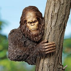 Big Foot for your garden...lol