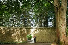 Wedding Gallery » Harrison Photography Wedding Gallery, Wedding Photography, Plants, Plant, Wedding Photos, Wedding Pictures, Planets