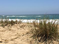Feel that sea breeze... Ocean heals the heart