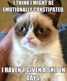 "The 20 Best ""Grumpy Cat"" Memes - Joe's Daily"