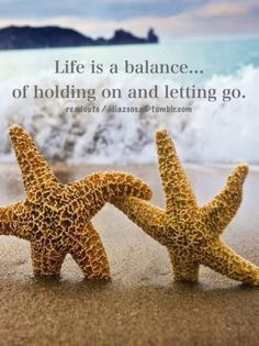 Life is a balance of holding on and letting go. quotes