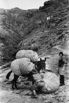 Josef Koudelka, Sierra Nevada, 1971.