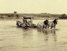 """Vintage - """"Horses hauling the car"""" photo, Red River, Texas. Nowadays, trucks haul the horses. Old Pictures, Old Photos, Vintage Pictures, Red River Texas, Texas History, History Class, Mexican Army, Only In Texas, Republic Of Texas"""