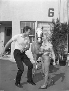 """Clint Eastwood dances the Twist with Connie Hines while Mr. Ed watches. This is candid photo was taken in 1962 during the filming of the MR. ED episode """"Clint Eastwood Meets Mister Ed""""."""