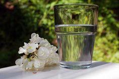 Akácvirág-ital recept